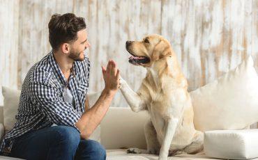 Lebensfreude Hund