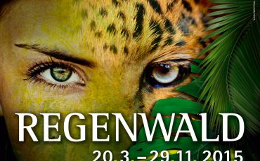 Ausstellung: Faszination Regenwald
