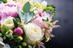 Schnittblumen richtig pflegen