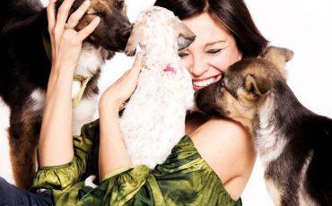Hunde: Ziemlich beste Freunde