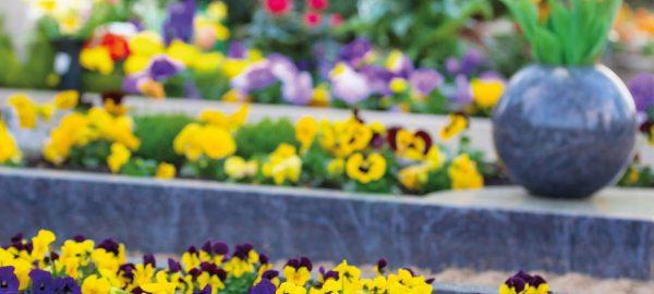 Grabpflege bei Blumen Holler